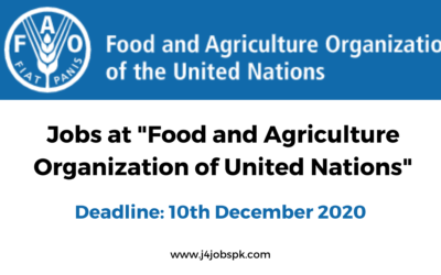 Food and Agriculture Organization UN | Economist | Apply Now