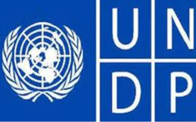 Program Manager – UNDP | Apply Now